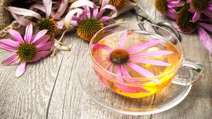 Herbatea útmutató: nullkalóriás csodaitalok