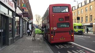 Hé, mit keres ez a ló egy londoni buszon?