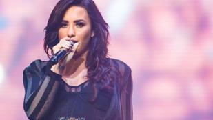 Demi Lovato ketrecharcos pasit váltott