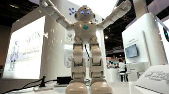 A házi robotoké a jövő a CES szerint