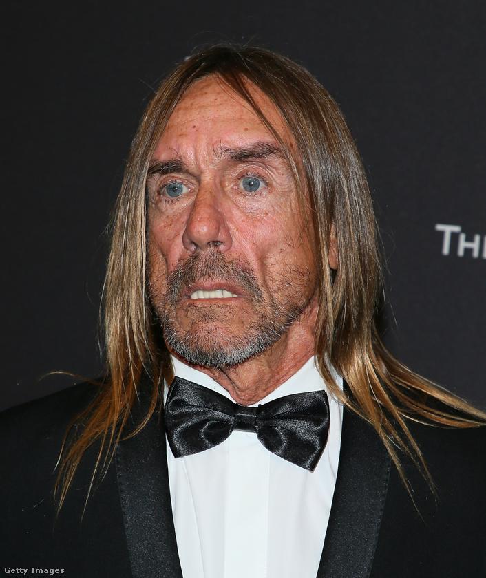 Egyrészt Jim Jarmusch készített egy dokumentumfilmet a Stoogesről (Gimme Danger címmel), másrészt megjelent egy egyórás film, amiben a Sonic Youth énekesével, Thurston Moore-al beszélget Iggy Pop egy lemezboltban