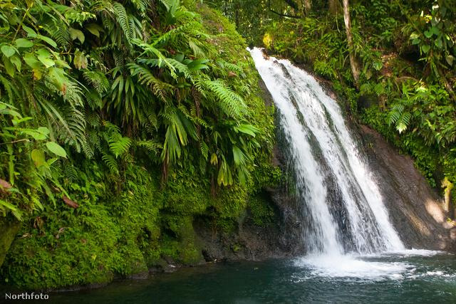 Hát ezért érdemes Guadeloupe-on kirándulni menni!
