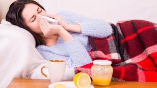 Itt tájékozódhat az influenzajárványról