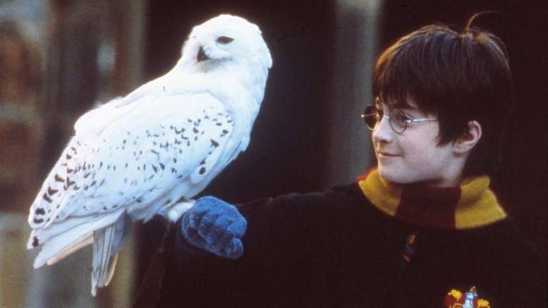 A Harry Potter dallamai szólnak az Arénában