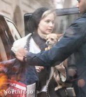 Budapestre a megszokottnak mondható, szőke hajszínével - és Pippi nevű kutyájával érkezett.