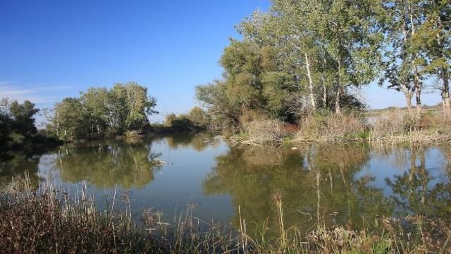 Madárparadicsommá alakítják a tiszaalpári tavat