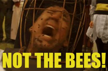 635982814837403409749105033 bees cover photo.gif