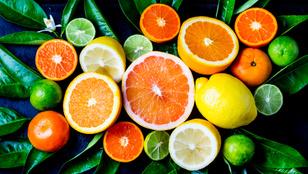 Tudta, hogy mi volt a narancs és a citrom őse?