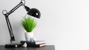 Fény nélkül is lehet növényeket nevelni