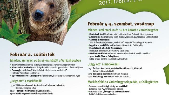 Ingyen mehetnek állatkertbe a gyerekek a Mackófesztiválon