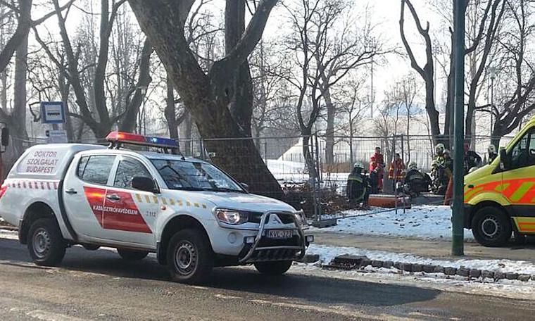 Gyorsan kiértek a helyszínre a mentők és tűzoltók, de már nem tudtak segíteni.
