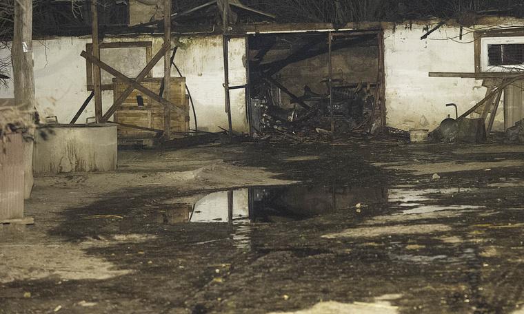 Leégett állatmenhely Kiskunlacházán.
