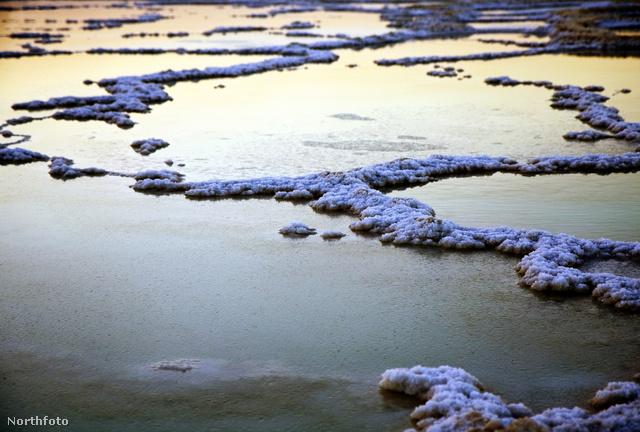 Nem hó, nem jég: só – Holt-tenger
