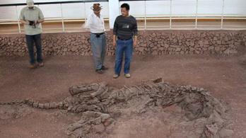 Sosem találtak még öregebb fehérjemaradványt, mint most egy 195 millió éves dinóban