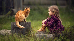 A háziállat a gyerek legjobb barátja, nem a testvér