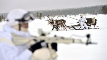 Rénszarvasokkal gyakorlatozott az orosz hadsereg