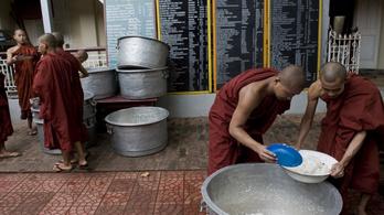 A fél világ rizst eszik, mégse tudják sokan, hogy kell jól megfőzni