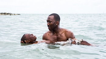 Ha ez a film nem kap Oscart, akkor nincs igazság