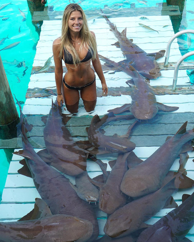 Nagyjából hét éve úszkál cápákkal.