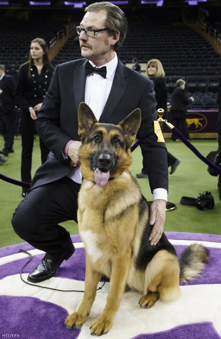 Rumor kiképzõjével Kent Boylesszal miután elnyerte a 141. Westminster kutyakiállítás legszebb ebe címet
