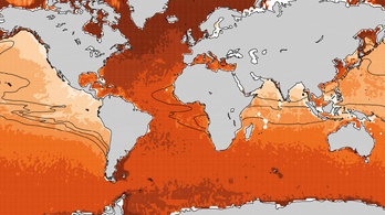 Fulladoznak a tengerek a klímaváltozás miatt