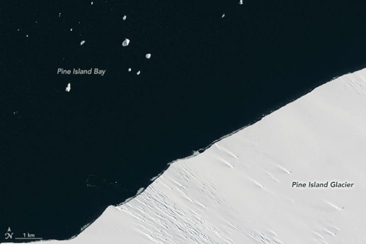 pineisland oli 2017024.gif