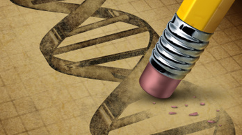 Döntöttek az évszázad biotechnológiai perében