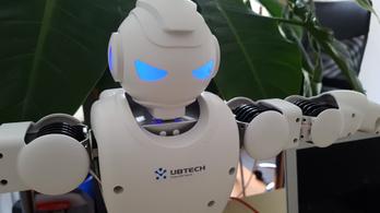 Ez a robot ugyan nem veszi el a munkát
