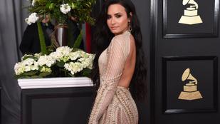 Demi Lovato 1%-ban afrikai, ezt büszkén bejelentette, a nép meg szétszedte