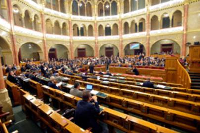 plenaris lead