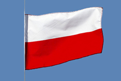 lengyel zaszlo lead