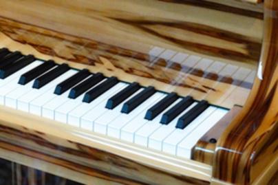 zongora lead
