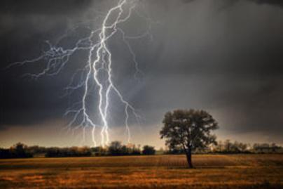 vihar lead