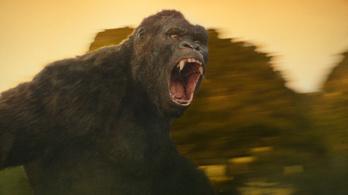 Magyar szarvasok dörgölőztek a dühöngő King Kong lábához
