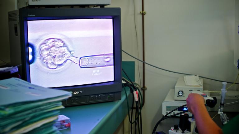 Életképes humán embriók génjeit szabták át