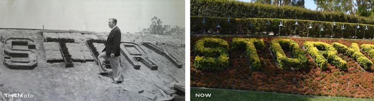 Walt Disney olyan parkot akart létrehozni, ami könnyen megközelíthető, és bőven jut hely mindenkinek