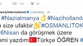 Twitter-hekkeléssel ömlik a török propaganda