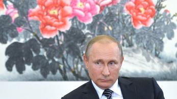 Az orosz szankciók fájnak, de nem annyira