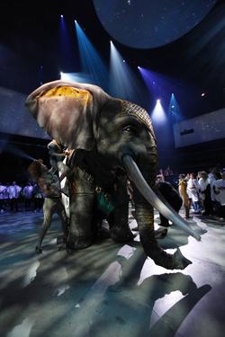 A Cirque du Soleil műelefátja, háttérben a fehér poncsósok