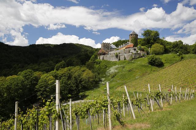 Deutschlandsberg vára és a környező szőlők