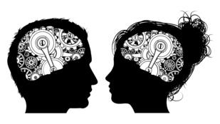 A férfiak agya nagyobb, mint a nőké. De mit jelent ez a mindennapokban?