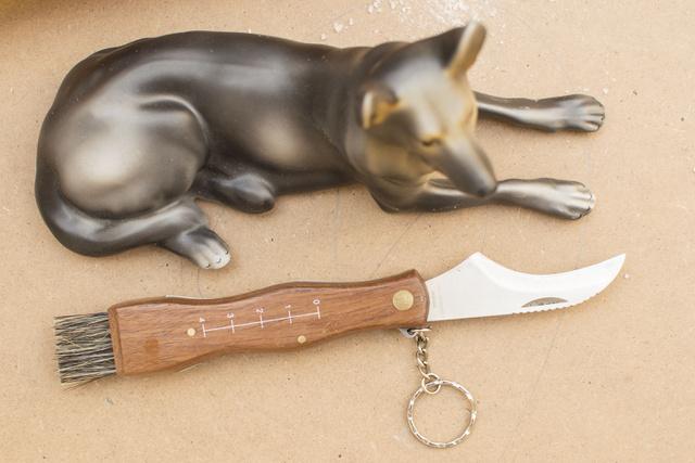 Egy bicska is megteszi, de aki késes, vegyen gombászkést