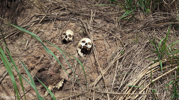 Emberi koponyák az út szélén Kongóban, március 12-én.
