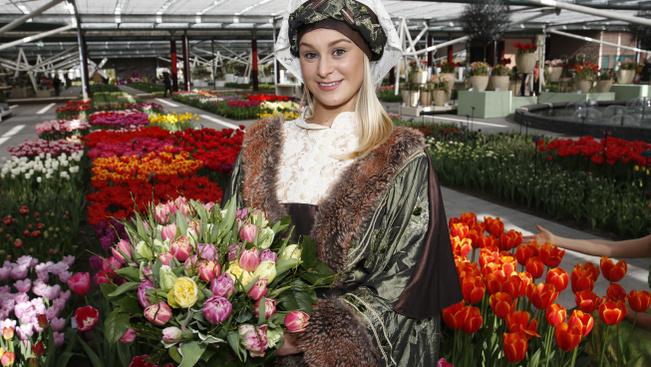 Megnyílt Hollandia tulipánoskertje