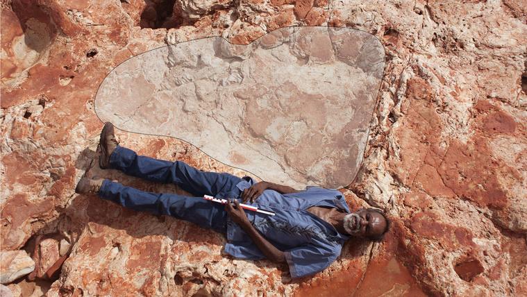 Rekordnagyságú dinoszaurusz-lábnyomot találtak Ausztráliában