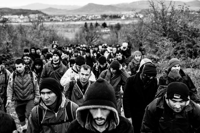 2. Képriport (sorozat) - 1. díj: Balogh Zoltán (MTI/MTVA): Idomeni, a Balkán út utolsó napjai