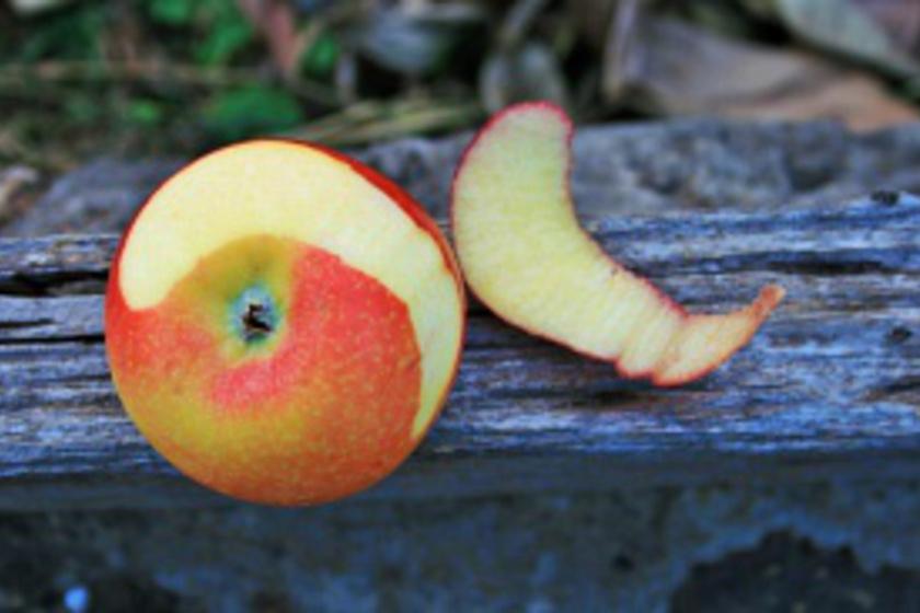 Ne dobd ki az alma héját!  Ha így használod, gyönyörű lesz tőle az arcod