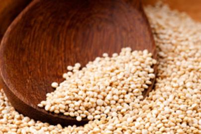 quinoa kicsi