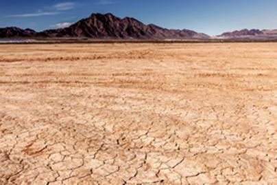 sivatag lead