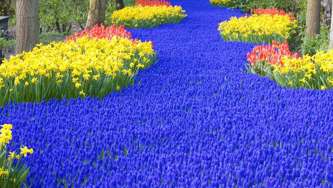A hétmillió tulipán kertje és az igazi húsvét Palócföldön